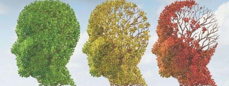 Kronisk stress - din hjerne ændrer sig