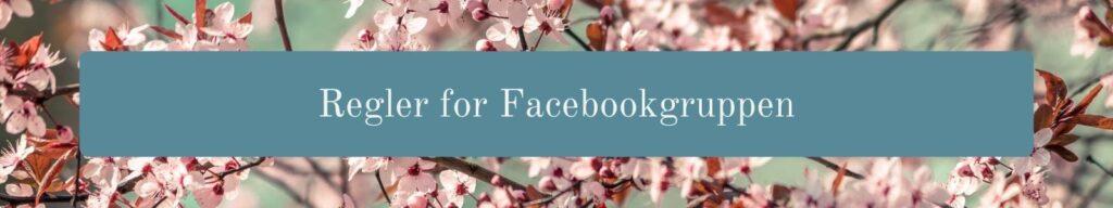 Regler for Facebookgruppen